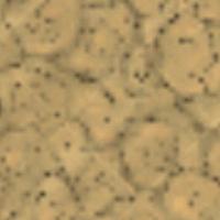 Darń guano na mapie