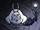 Zdenerwowany wielki królik.png