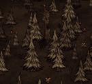 Przykładowa lokalizacja całkowicie normalnego drzewa