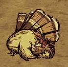 Śpiący gobbler