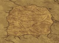Ziemia pokryta darnią sawanny