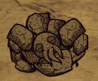 Śpiący skalny homar