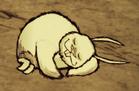Śpiący wielki królik