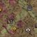 Obszar wojskowy na mapie