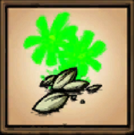 More plantables ikona