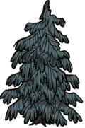 Guzowate drzewo