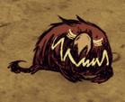 Śpiący czerwony pies gończy