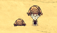 Kapelusz mózgomyśli w grze (DSS)