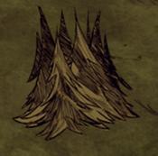 180px-Treeclump