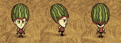 Wilson Modny melon (RoG)