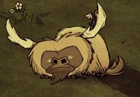Śpiący bawół