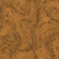 Darń błotnista na mapie