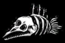 Morskie kości 3