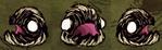 Ślizgacz widoczny z trzech stron