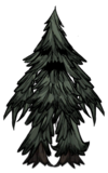 Drzewiec