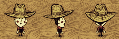 400px-Wes StrawHat