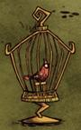 Czerwony ptak w klatce