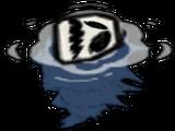 Skorupka dziurkacza (DST)