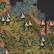Mieszany las grzybowy na mapie