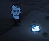Maxwell stojący przy świetle robaka