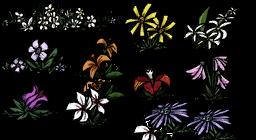 Rodzaje kwiatów w grze