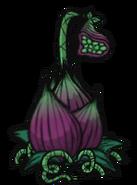 Wabiąca roślina