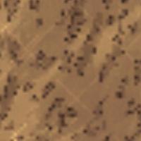Darń bagienna na mapie
