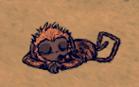 Małpadss