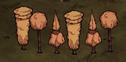 Marmurowe Drzewa