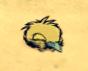 Mały dodo dss