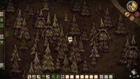 Kilka drzewców znajduje się poza ujęciem