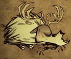 Śpiący jeleniocyklop