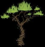 Drzewo dżunglowe (DSS)