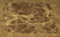 Ziemia pokryta klejącą pajęczyną