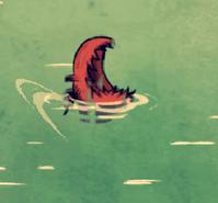 Morski pies gonczy martwy