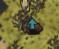 Wyjście z jaskini na powierzchnię na mapie