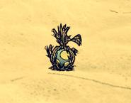 Gniazdo Dodo w grze (DSS)