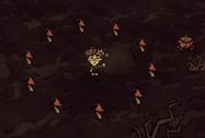 Krąg Czerwonych Grzybów