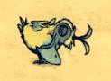 Dodo śpiący