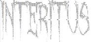 INTERITUS ASCII