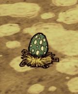 Jajo wysokiego ptaka