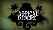 Tropical Experience wallpaper (mod)