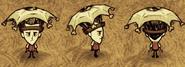 Wilson Oczna parasolka (RoG)