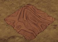 Ziemia pokryta czerwoną darnią grzybową