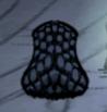 Pająk jaskiniowy ukryty w swojej muszli