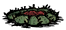 Zebrany kaktus (RoG)
