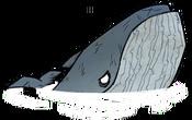 Wieloryb niebieski (DSS)
