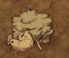 Śluzowca dst