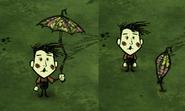 Wes z ładnym parasolem