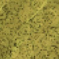 Darń szlamowa na mapie
